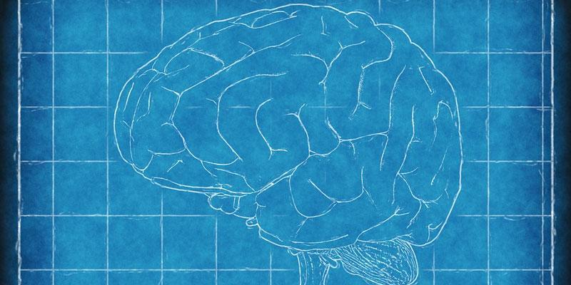 Brain Science Axonify